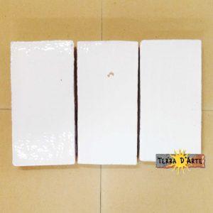 Mattonelle fondo Bianco Ghiaccio 10 x 20 - TERRA D'ARTE